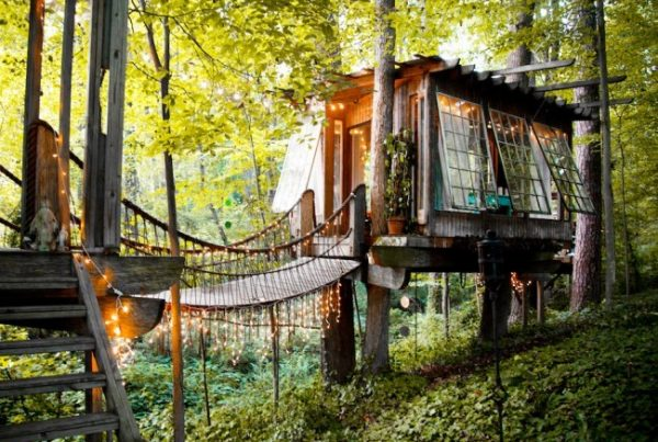 Airbnb-Tree-House