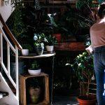 ecofriendly-airbnb-vakantieverhuur